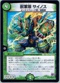 獣軍隊 サイノス[DM_DMR17_53/94]
