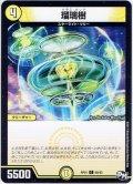 瑠璃樹[DM_RP-01_60/93C]