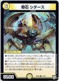 奇石 シダース[DM_RP-06_12/93R]