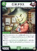C.W.テラス[DM_RP-07_52/94U]
