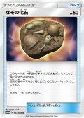 なぞの化石[PKM_SM5M55/66C]