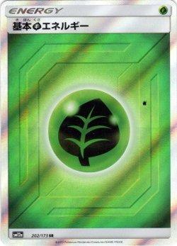 画像1: 基本くさエネルギー[PKM_sm12a_202/173SR]
