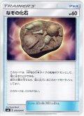 なぞの化石[PKM_sm6_78/94C]