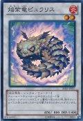 【Super】焔紫竜ピュラリス[YGO_SHSP-JP057]
