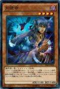 【N-Parallel】月読命[YGO_20AP-JP026]