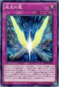 【Normal】追走の翼[YGO_BOSH-JP070]