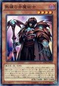 【Normal】熟練の赤魔術士[YGO_DOCS-JP036]