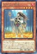 【Rare】不知火の隠者[YGO_TDIL-JP031]