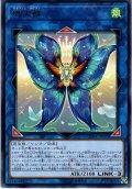 【Rare】熾天蝶(セラフィム・パピヨン)[YGO_CHIM-JP050]