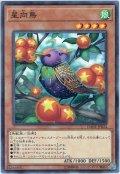 【Normal】星向鳥[YGO_DANE-JP024]
