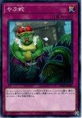 【Normal】やぶ蛇[YGO_DBMF-JP045]