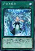 【Normal】六花の風花[YGO_DBSS-JP024]