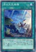 【Normal】雨の天気模様[YGO_DBSW-JP037]