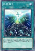 【N-Rare】取捨蘇生[YGO_FLOD-JP066]