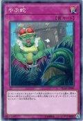 【N-Rare】やぶ蛇[YGO_FLOD-JP080]