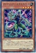 【Normal】ダイナレスラー・カポエラプトル[YGO_SOFU-JP007]