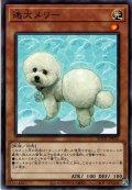 【N-Rare】迷犬メリー[YGO_BODE-JP035]