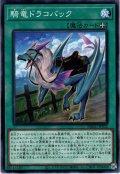 【Normal】騎竜ドラコバック[YGO_DBGC-JP032]