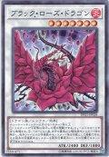 【Normal】ブラック・ローズ・ドラゴン[YGO_DP21-JP028]