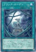 【Normal】ブラック・ガーデン[YGO_DP21-JP032]