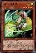 【Rare】SR吹持童子[YGO_DP25-JP001]