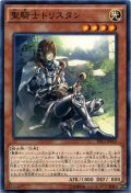 【Normal】聖騎士トリスタン[YGO_EP14-JP005]