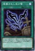 【Millennium】埋葬されし生け贄[YGO_PGB1-JP043]