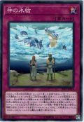 【Normal】神の氷結[YGO_20PP-JP019]