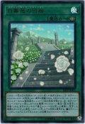 【Ultra】白薔薇の回廊[YGO_20PP-JP011]