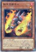 【N-Parallel】転生炎獣モル[YGO_SD35-JP002]