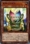 【Normal】聖種の天双芽[YGO_SLT1-JP030]