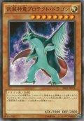 【Normal】武装神竜プロテクト・ドラゴン[YGO_SR02-JP012]