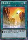 【N-Parallel】竜の渓谷[YGO_SR02-JP025]