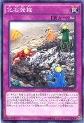 【Normal】化石発掘[YGO_SR04-JP032]