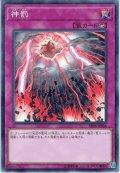 【Normal】神罰[YGO_SR05-JP036]