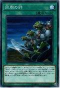 【Normal】同胞の絆[YGO_SR10-JP030]