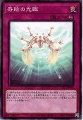 【Normal】奇跡の光臨[YGO_SR12-JP035]