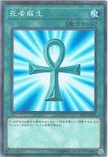 【N-Parallel】死者蘇生[YGO_ST19-JP024]
