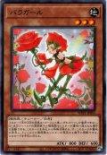 【Rare】バラガール[YGO_WPP1-JP055]