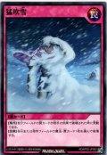 【Normal】猛吹雪[YGO_RD/KP02-JP050]