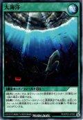 【Normal】大海洋[YGO_RD/KP03-JP050]