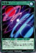 【Normal】対生成[YGO_RD/MAX1-JP018]
