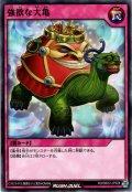 【Normal】強欲な大亀[YGO_RD/SBD2-JP028]